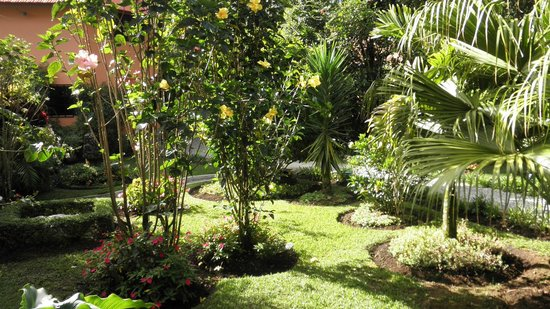Boquete Garden Inn: the gorgeous gardens