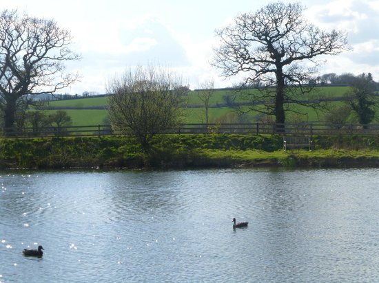 Spillers Farm : View across the lake