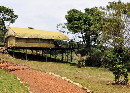 Ngamba Island Tented Camp : 2