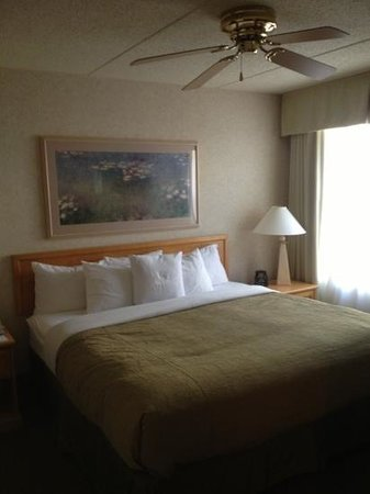 Homewood Suites by Hilton Harrisburg-West Hershey Area: Homewood room king.