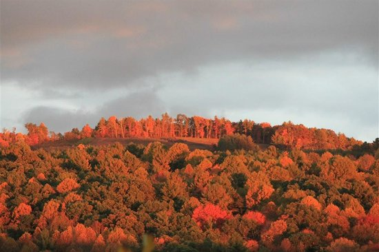 Mountain Song Inn: Fall Splender