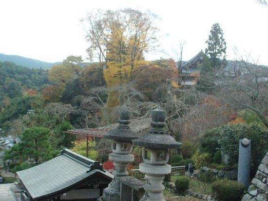 Hasedera Temple: 長谷寺