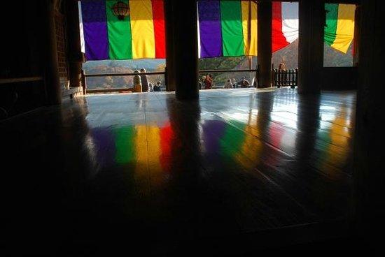 Hasedera Temple: 長谷寺21