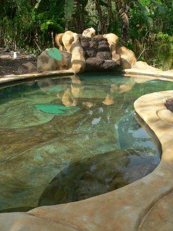 Hotel Blue Conga: au coeur des tropiques
