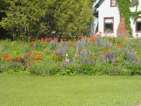 Windermere Inn : Our spring garden