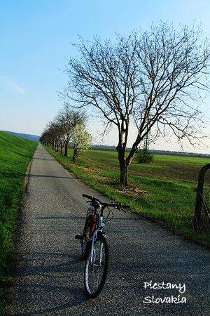 Rybarsky Dvor: Rental bicycles