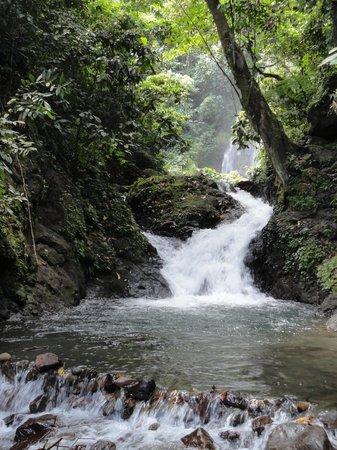 Buhi trAncient's Home: falls
