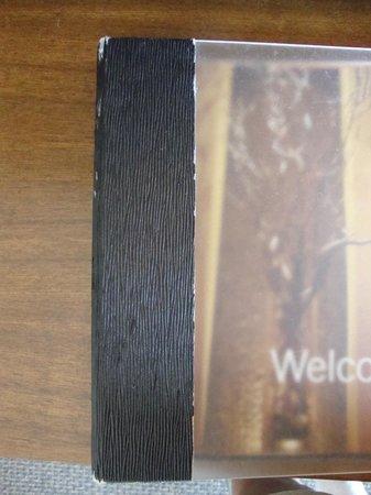 Hyatt Regency Mission Bay: worn out welcome book