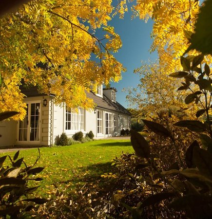 Hillsfield House Bed and Breakfast Marlborough: Autumn colours