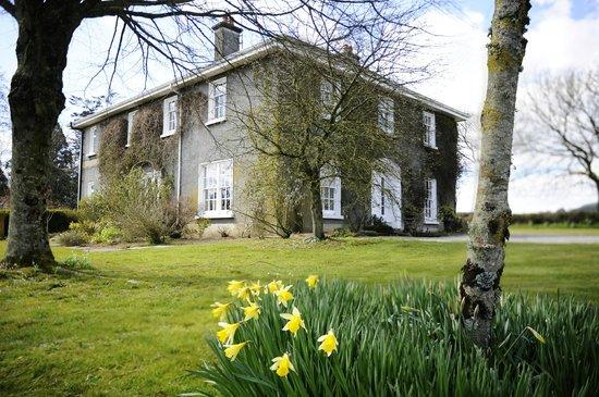 Saratoga Lodge in Spring