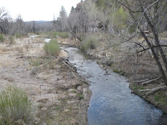 Gila Wilderness Area: Gila tributary