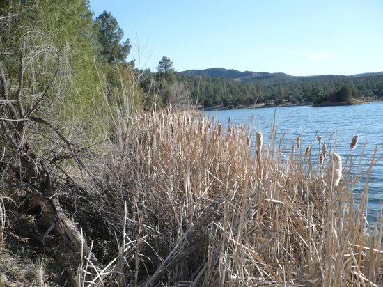 Gila Wilderness Area : Serenely beautiful Lake Roberts