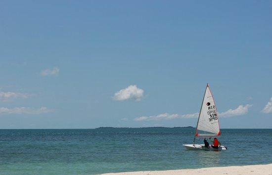 Pulau Joyo: sailing