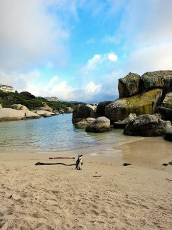 Simon's Town Backpackers Image