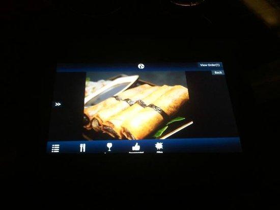 Skky : the i pad menu