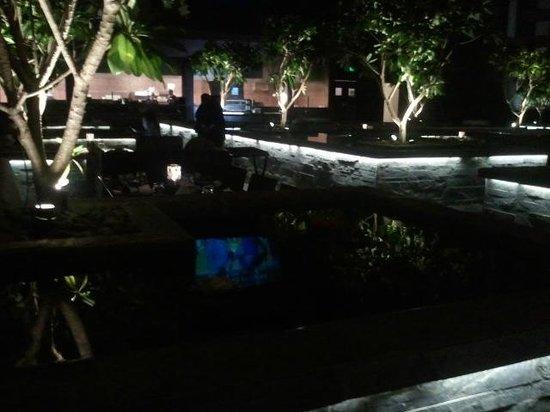 Skky : brilliant atmosphere under the garden lights