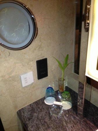 Victoria Grand Hotel: bathroom