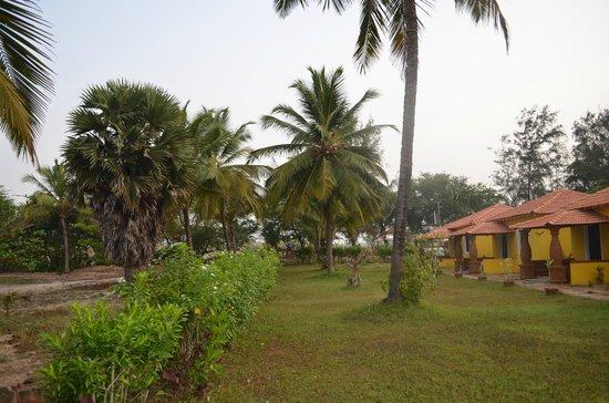 L'Amour Beach Resort: Grounds