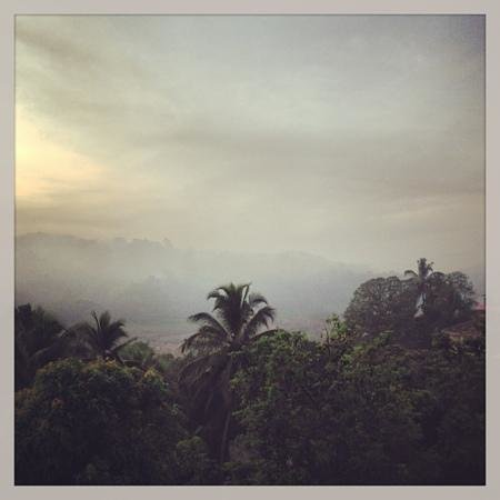 Kandy Holiday Home: morning view from the terrace
