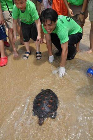 The Ritz-Carlton Sanya, Yalong Bay: Watching release of endangered sea turtle at The Ritz Carlton