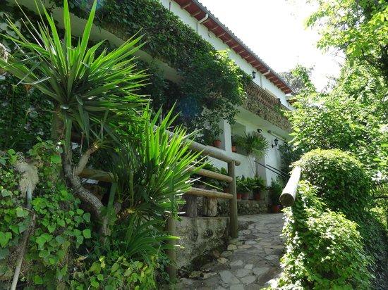 Apartamentos Arroyo Parrilla