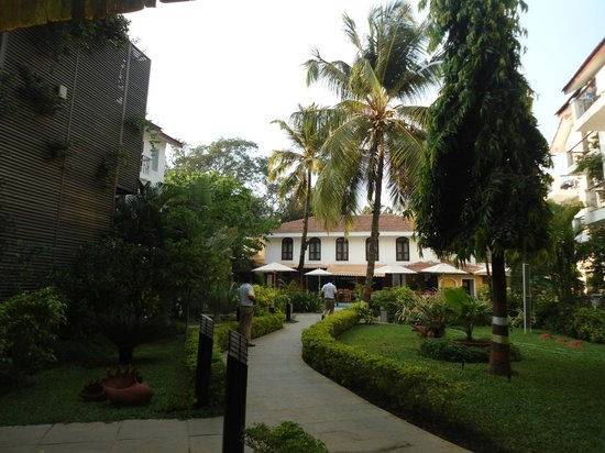 Citrus Goa: Day view