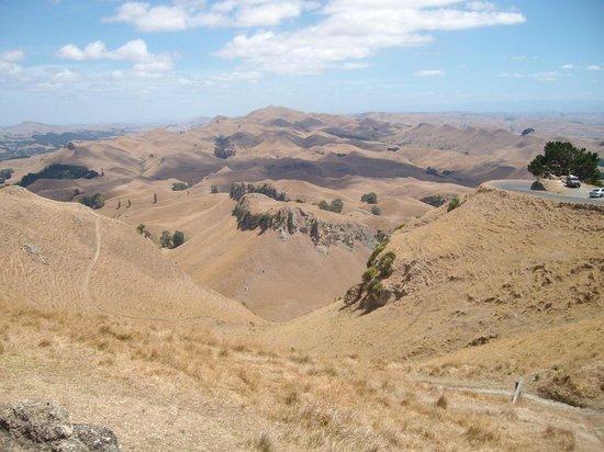 Prinsy's Tours Hawkes Bay: View from Te Mata Peak
