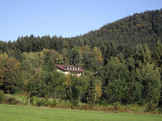 Morada Hotel Bischofsmais: Mitten im Wald
