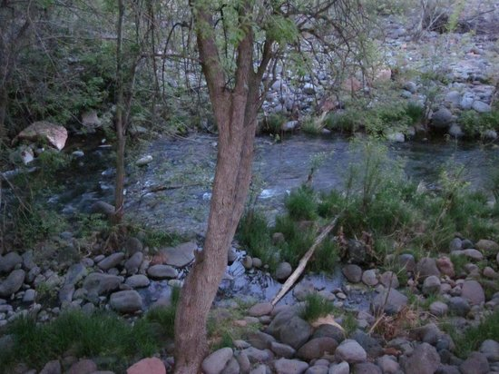 BEST WESTERN PLUS Arroyo Roble Hotel & Creekside Villas: Stream near the timeshare where hotel guests are allowed