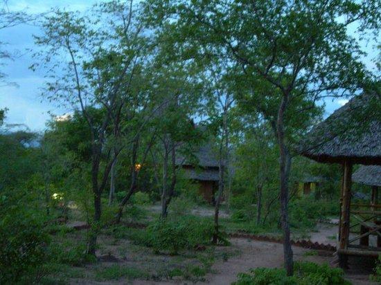 Angalia Tented Camp: la noche mágica