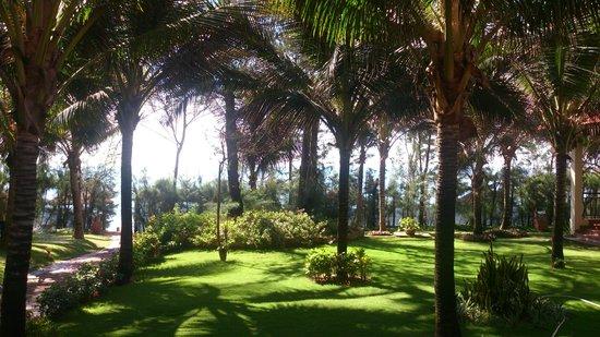 Golden Coast Resort and Spa: Я забронировал бунгало с видом на море, вот такой вид у меня был с веранды и окон