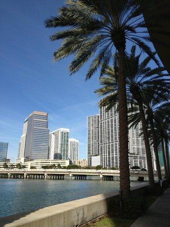 Mandarin Oriental, Miami: Views everywhere