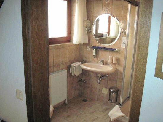Landgasthof zum Hirschen: Bathroom with corner shower unit