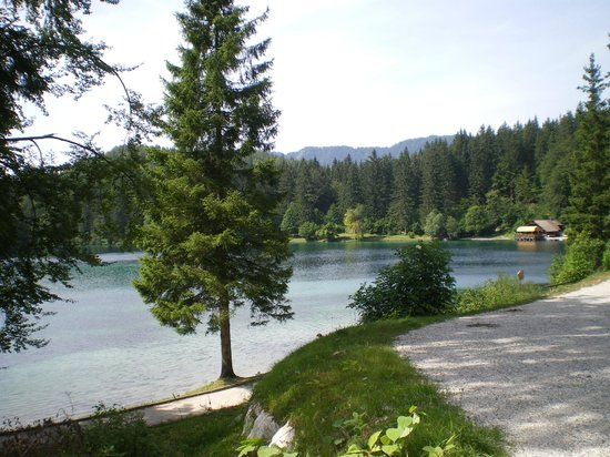 Albergo Edelweiss: Veduta del lago