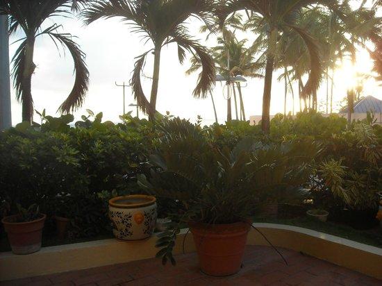 Sandy Beach Hotel: Allí me sentaba x la mañana o la tarde a disfrutar de una charla