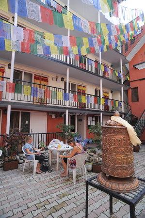Hotel Himalaya Yoga: Garden