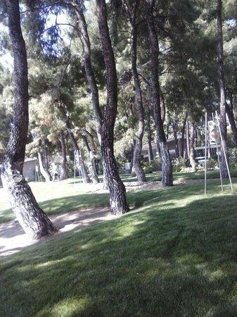 Club Med Gregolimano: Kameruitzicht
