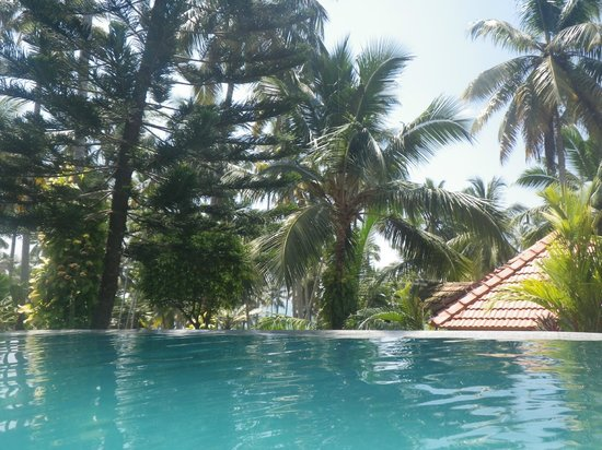 Thiruvambadi Beach Retreat: lush tropical grounds!