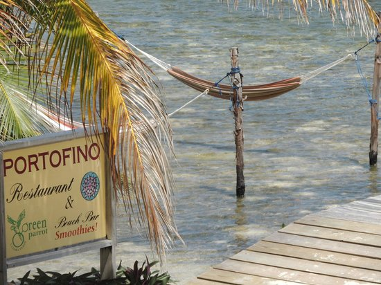Portofino Beach Resort: Can you imagine??