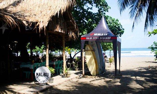 Malibu surfer paradise bar & resto