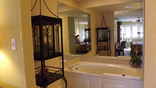 Fairfield Plantation: Master bath