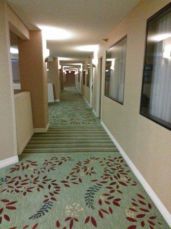 Hilton Washington DC / Rockville Executive Meeting Center: 11