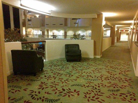 Hilton Washington DC / Rockville Executive Meeting Center : 16