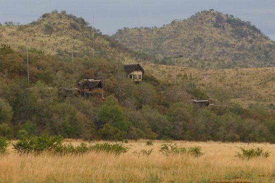 Not For Sissies Tours & Adventures: Tshukudu Lodge in Pilanesberg
