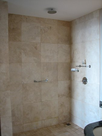 Atlanticview Cape Town Boutique Hotel: Shower with no door