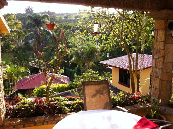 La Terraza Guest House B&B: The view from where we ate breakfast every morning!