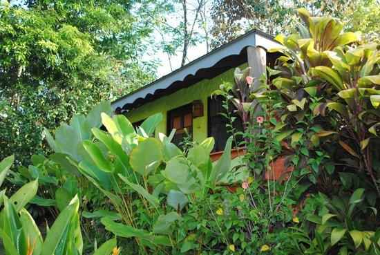 Phidjie Lodge : un très joli bungalow