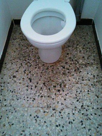 Court'Inn Suites : le sol des toilettes