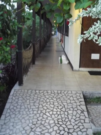 Heilala Holiday Lodge: Path to communal kitchen and Standard Rooms