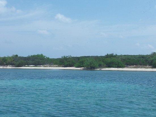 Isla Contoy: spiaggia dalla barca